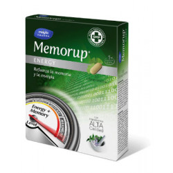 MEMORUP ENERGY 30 COMP.
