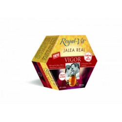 DIETISA ROYAL-VIT VIGOR 20 VIALES