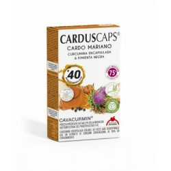 CARDUS CURCUMA 60caps.